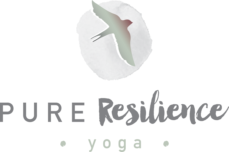 Pure Resilience Yoga with Rachel Manetti
